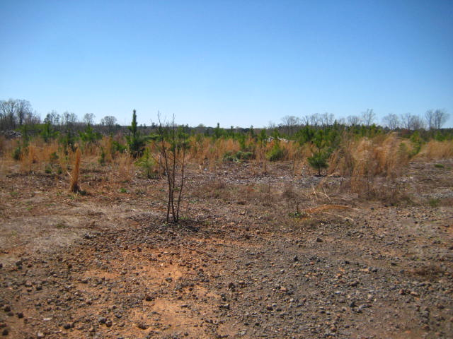 Land for Sale, ListingId:32819320, location: 170 Stowe Road Gastonia 28056