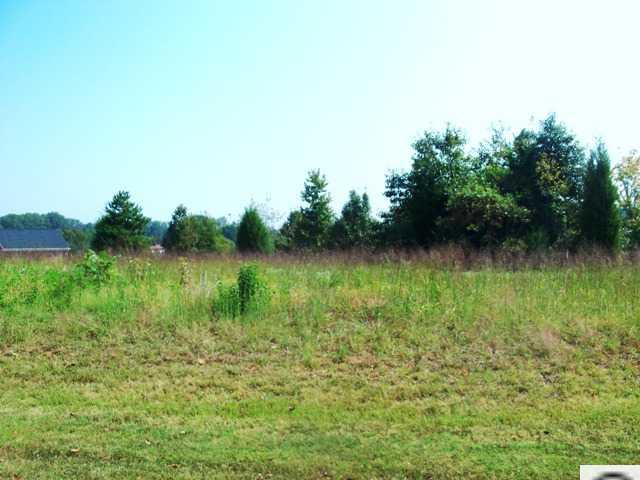 Real Estate for Sale, ListingId: 29024106, Statesville,NC28625
