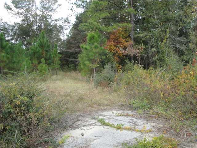 11473 North Hwy 17 North, Georgetown, SC, 29440 -- Homes For Sale