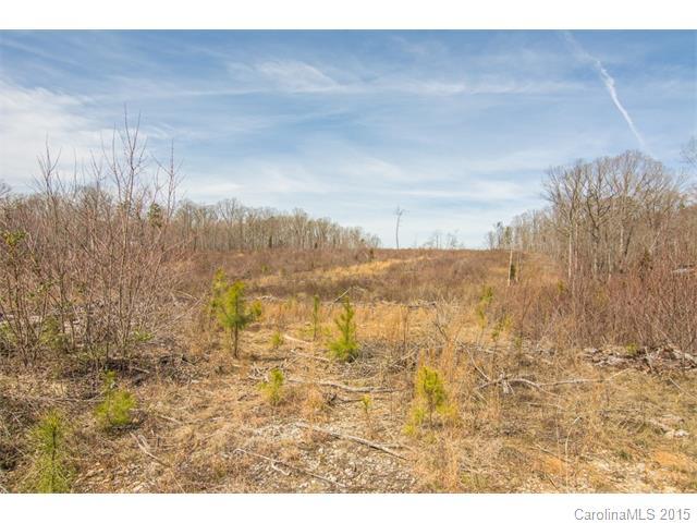 Real Estate for Sale, ListingId: 32250510, Indian Land,SC29707