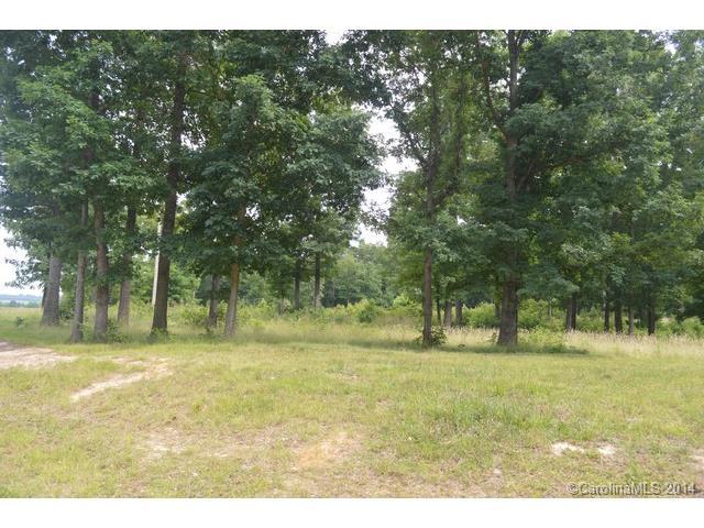 Real Estate for Sale, ListingId: 31633135, Mt Pleasant,NC28124
