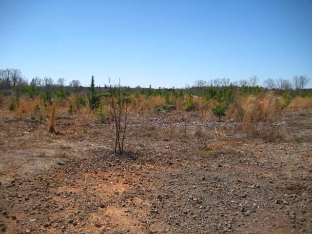 Land for Sale, ListingId:32819320, location: 170 Stowe Road Gastonia 28056